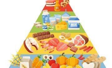 Food Nutritional Value (Energy) Calculation